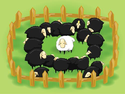 Illustration of sheep shows you must measure against norms to get true answers.